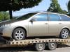 Výkup Nissan Primera kombi 2,0i 16V, rv:2004, nové v ČR.